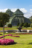 Greenhouse at the imperial garden of Schoenbrunn Royalty Free Stock Images