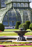 Greenhouse at the imperial garden of Schoenbrunn Royalty Free Stock Image