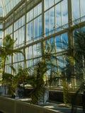 GreenHouse Interior Stock Photos