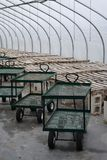Greenhouse irrigation and carts. Transport carts line rows of empty plant and seedling tables in a New England commercial plant nursery Stock Photo
