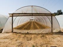 Greenhouse Royalty Free Stock Photo