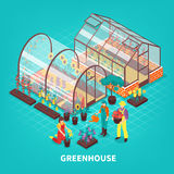 Greenhouse Isometric Composition Stock Photo