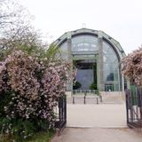 Greenhouse, Jardin des Plantes, Paris. Botanic Gardens in Paris, France.  Photgraph showing the beautiful classic architecture of the glass and steel green house Stock Image