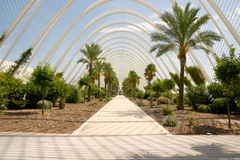 Greenhouse L'Umbracle Stock Image