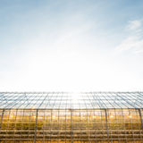Greenhouse with lamps inside Royalty Free Stock Image
