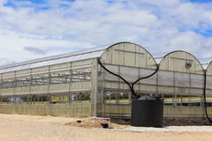 Greenhouse. A large greenhouse used to grow different annuals and perennials Stock Images