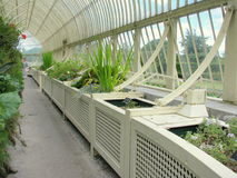 Greenhouse at The National Botanic Gardens of Dublin Stock Image