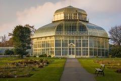 Greenhouse. National Botanic Gardens. Dublin. Ireland. Greenhouse at sunset. National Botanic Gardens. Dublin. Ireland Royalty Free Stock Image