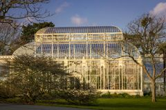 Greenhouse. National Botanic Gardens. Dublin. Ireland. Greenhouse at sunset. National Botanic Gardens. Dublin. Ireland Royalty Free Stock Photos