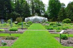 Greenhouse in National Garden in Belgium. Victorian greenhouse in herb garden of National Garden in Meise, Belgium Royalty Free Stock Photography