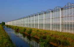 Greenhouse in the netherlands Stock Photography