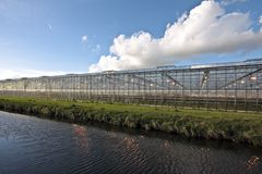Greenhouse in the Netherlands. Greenhouse in the countryside from the Netherlands Royalty Free Stock Photo
