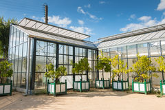 Greenhouse of the Stock Photography