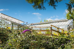 Greenhouse of the olfacties garden at Coex, France Stock Photo