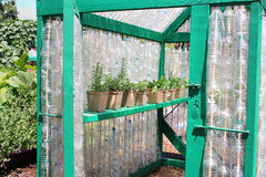 Greenhouse. Organic greenhouse from recycled bottles Royalty Free Stock Photos