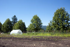 Greenhouse and garden ready to plant Royalty Free Stock Photos