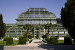 Greenhouse - Palmenhaus Schönbrunn Royalty Free Stock Photography