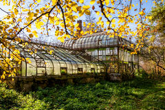 Greenhouse. Picture of abandoned greenhouse in fall Royalty Free Stock Images