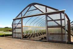 Greenhouse plant nursery, Oreg Royalty Free Stock Photography