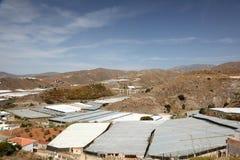 Greenhouse plantations Stock Photo