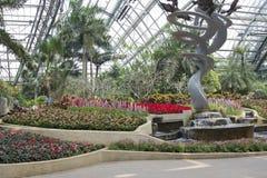 Greenhouse plants display hall Royalty Free Stock Image