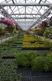 Greenhouse Plants and Flowers For Sale. Greenhouse full of flowers, garden plants, and vegetables for sale stock photo