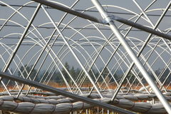 Greenhouse Rib or Poles Royalty Free Stock Photography