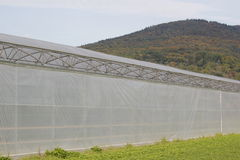 Greenhouse. In rural german landscape royalty free stock image
