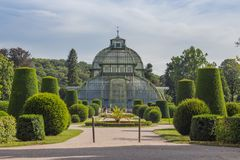 Greenhouse Schonbrunn royalty free stock photo