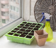 Greenhouse for seedlings and peat pots Royalty Free Stock Photos
