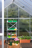 Greenhouse for seedlings and plants Royalty Free Stock Photos