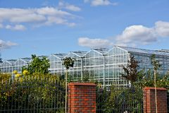 Greenhouse and shrubs. Greenhouse and bushes in a plantation of vegetables Royalty Free Stock Photos