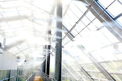 Greenhouse with sprinklers Stock Image