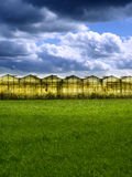 Greenhouse at sunset Royalty Free Stock Photography