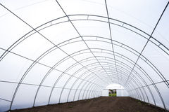 Greenhouse tunnel interior Stock Image