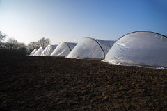 Greenhouse tunnels from polythene plastic in a row on an agricul Royalty Free Stock Images