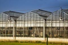 Greenhouse under blue sky stock photography