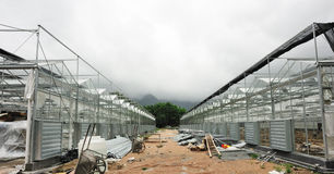 Greenhouse under construction Stock Image