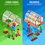 Greenhouse Vertical Banner Set Stock Photo