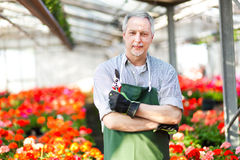 Greenhouse worker portrait Royalty Free Stock Photography