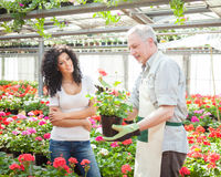 Greenhouse worker talking to a customer Royalty Free Stock Photos
