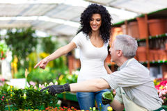 Greenhouse worker talking to a customer Royalty Free Stock Image