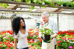 Greenhouse worker talking to a customer Stock Photography