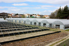 Greenhouses. For cultivating  ornamental plants and vegetables, plant nursery Royalty Free Stock Image