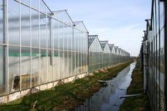 Greenhouses Royalty Free Stock Photo