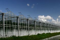 Greenhouses. Greenhouse nursery with open window-exterior Stock Photos