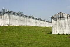 Greenhouses Stock Image