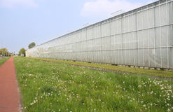 Greenhouses. In the Westland in Holland Royalty Free Stock Photography