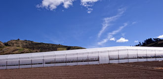 Greenhouses for agriculture Stock Photos