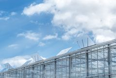 Greenhouses with blue sky and fluffy clouds. Stock Images